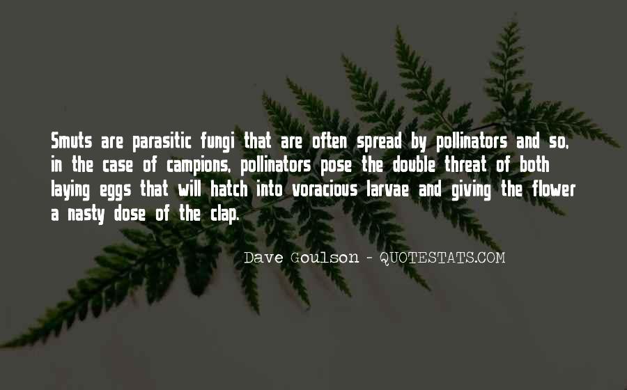 Damon Salvatore And Katherine Pierce Quotes #887712