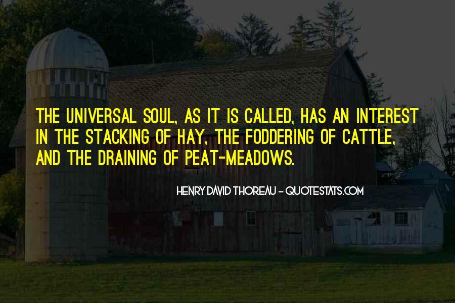 David Peat Quotes #241224