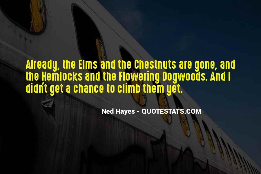 Dc Comics Raven Quotes #959400