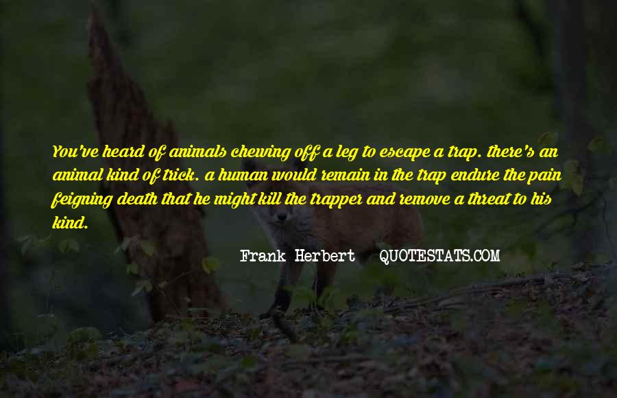 Death Like Quotes #258