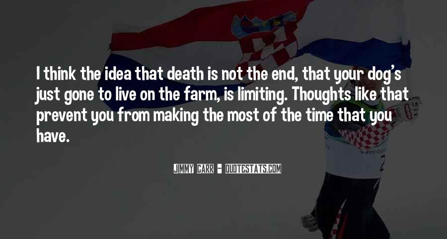 Death Not The End Quotes #778581