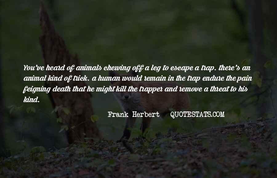 Death Wish 5 Quotes #258