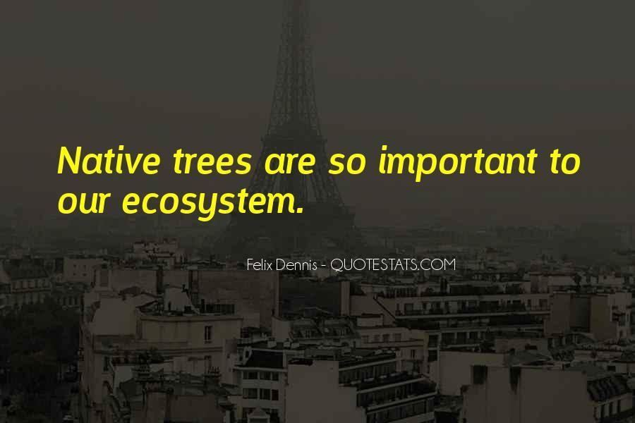 Dennis Felix Quotes #1601269