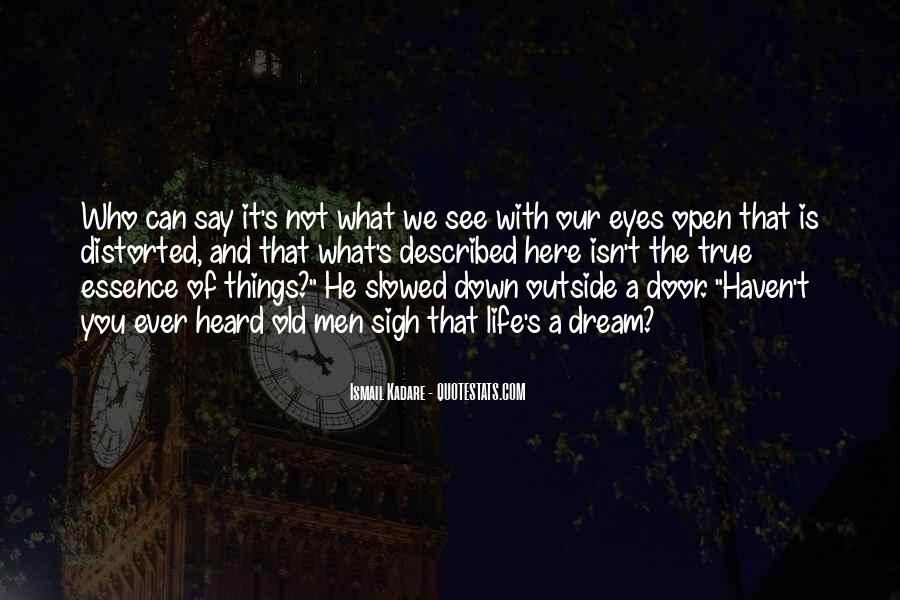 Described Quotes #102489