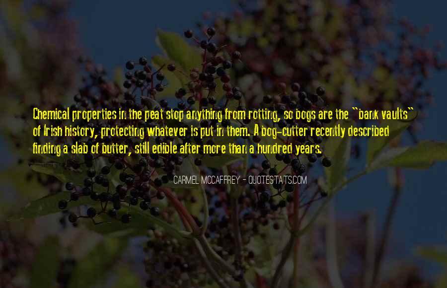 Described Quotes #173322