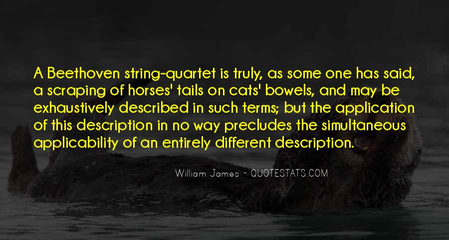Described Quotes #19482