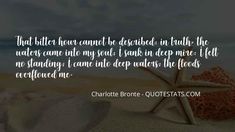 Described Quotes #3773