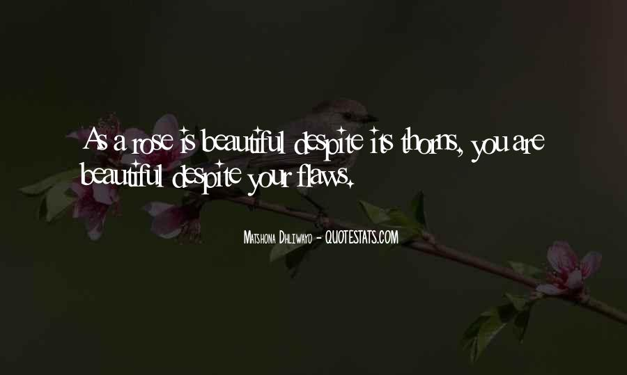 Despite My Flaws Quotes #289108