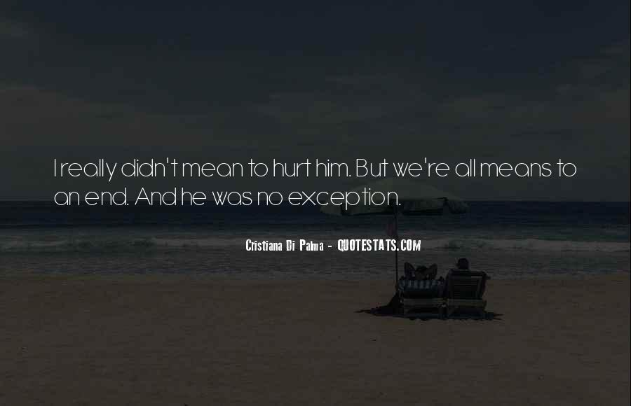 Didn't Mean To Hurt Quotes #290709