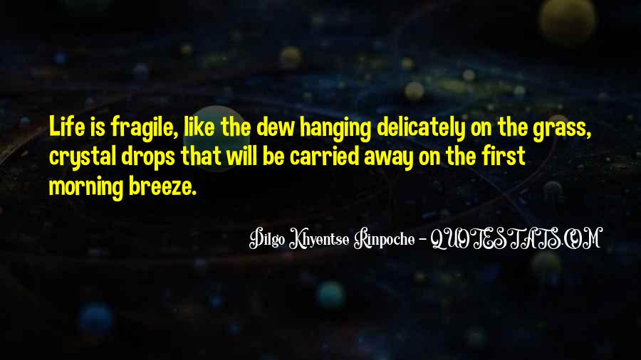 Dilgo Rinpoche Quotes #1399881