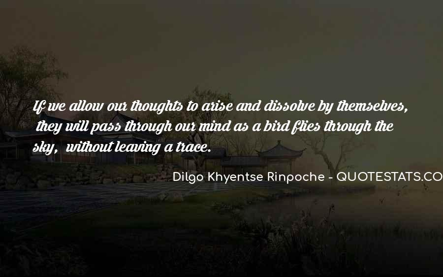 Dilgo Rinpoche Quotes #1818700