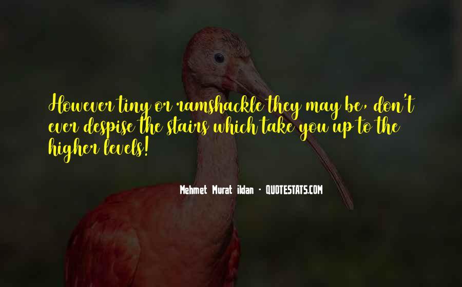 Don't Despise Quotes #1146748