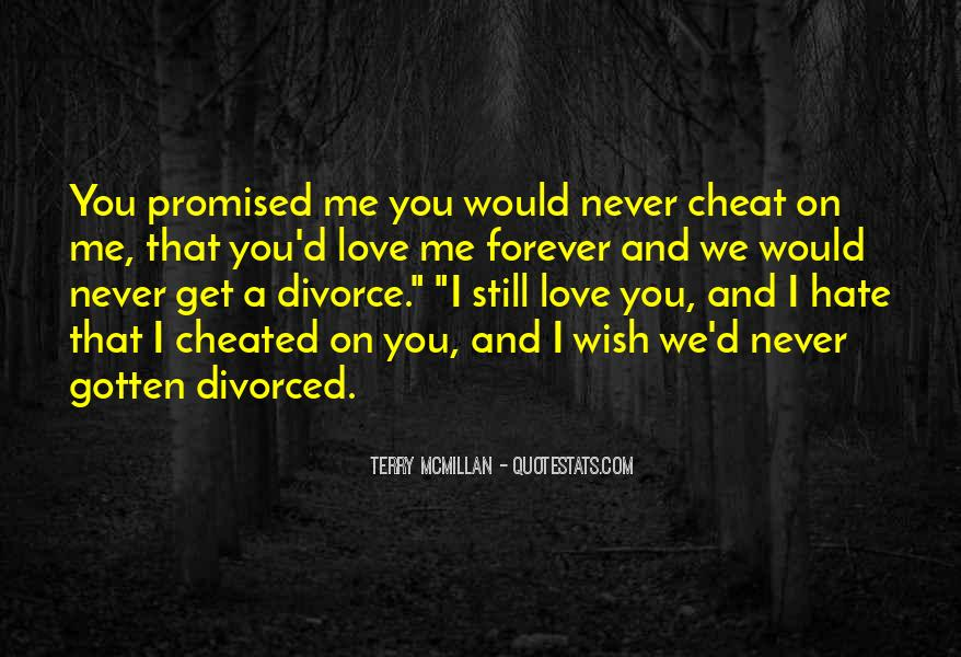 Don't Ever Cheat Quotes #13146