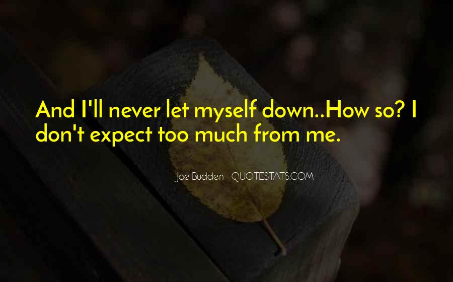 Don't Let Me Down Quotes #1593192
