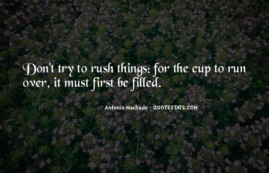 Don't Rush Things Quotes #178978
