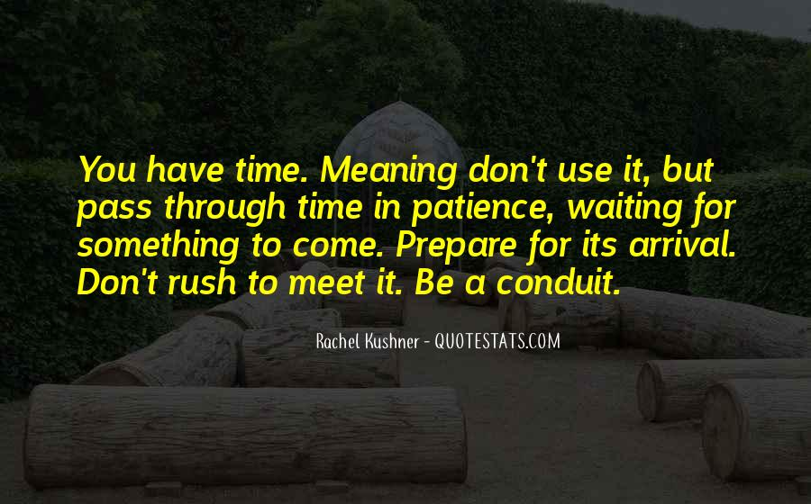 Don't Rush Things Quotes #237991