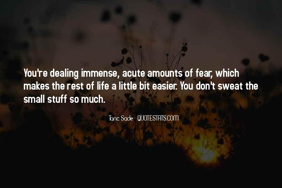 Don't Sweat The Small Things Quotes #1179387