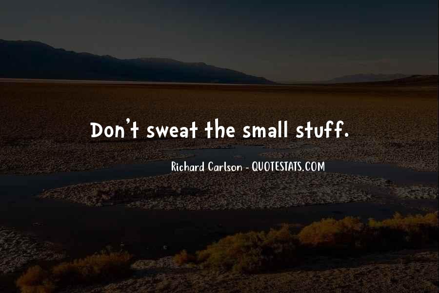 Don't Sweat The Small Things Quotes #405567