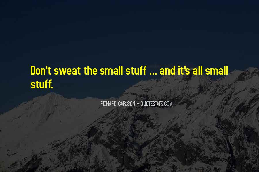 Don't Sweat The Small Things Quotes #473464