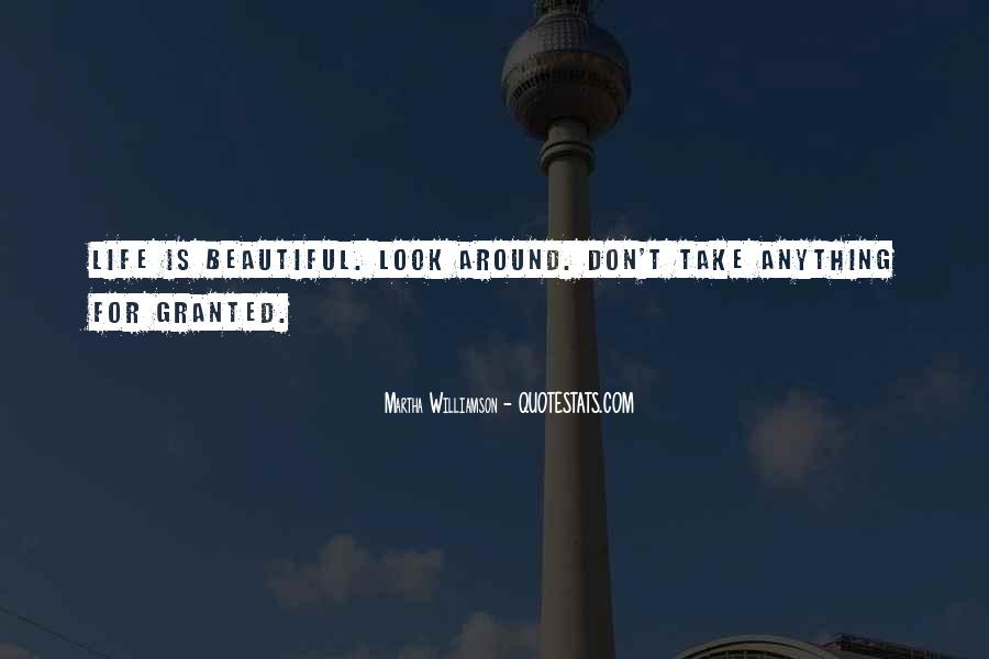Don't Take Me Granted Quotes #409165