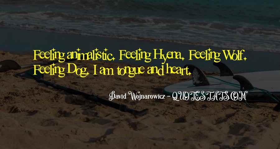 Dragon Age 2 Sandal Quotes #1040914