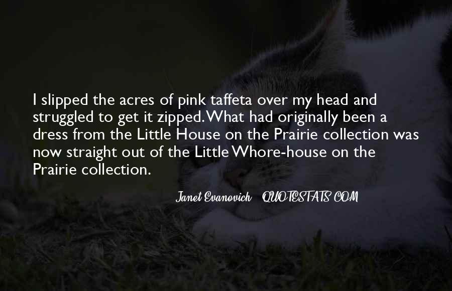 Dream On Aerosmith Quotes #328060