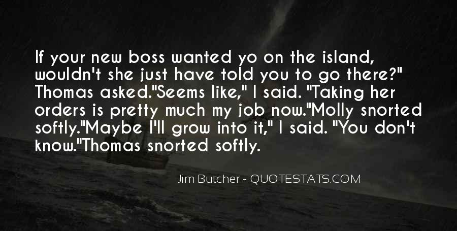 Dresden Files Quotes #532560