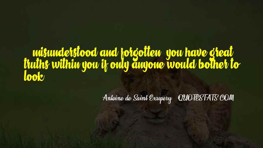Dulquar Salman Quotes #146929