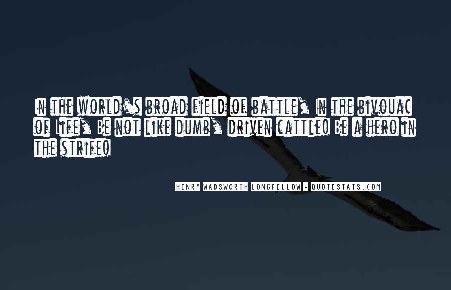 Dumb Broad Quotes #228735