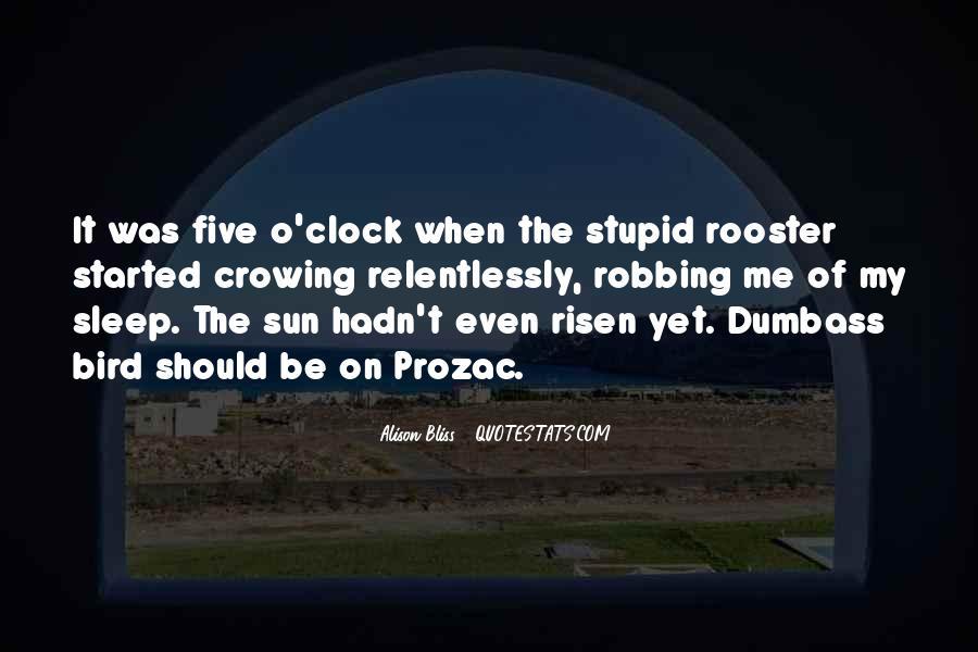 Dumbass Quotes #1033037