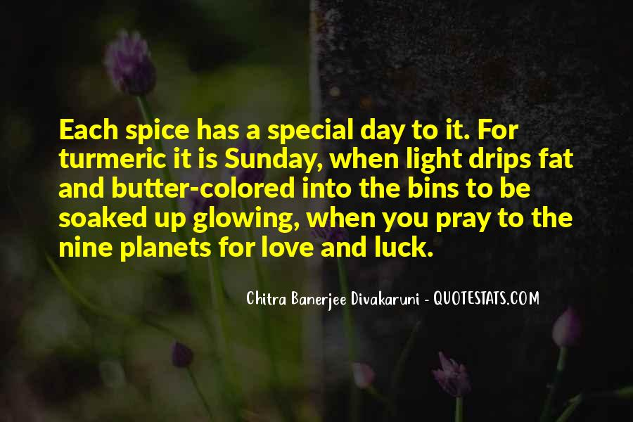 Each Day Is Special Quotes #375150