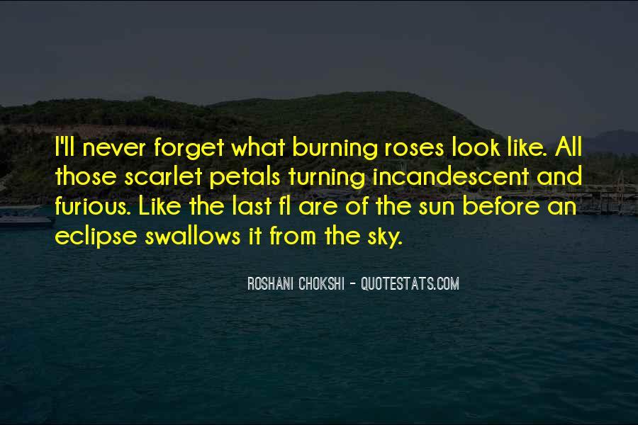 Eclipse Quotes #3781