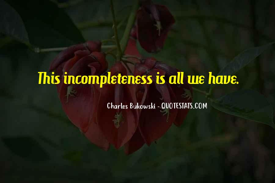Quotes About Incompleteness #176684