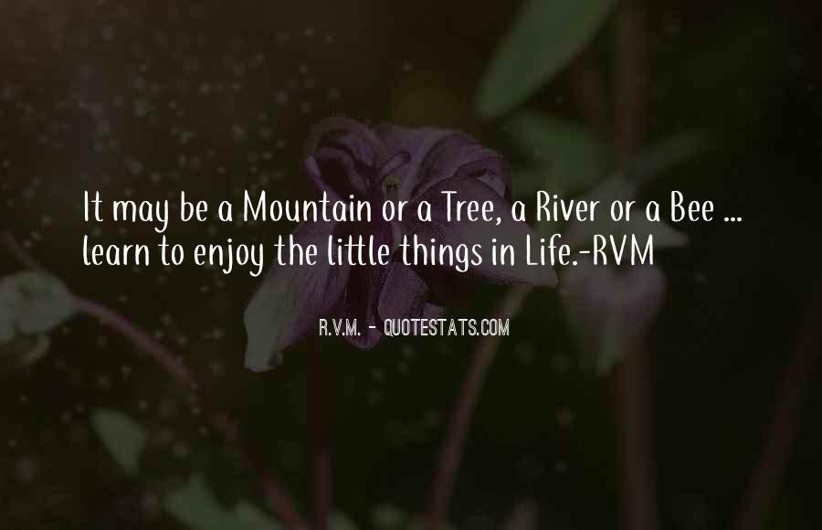 Enjoy Little Thing Quotes #66555