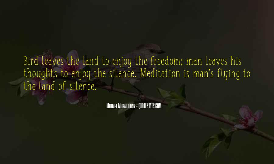 Enjoy The Silence Quotes #403171