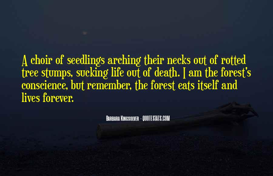 Quotes About The Life Of A Tree #760594