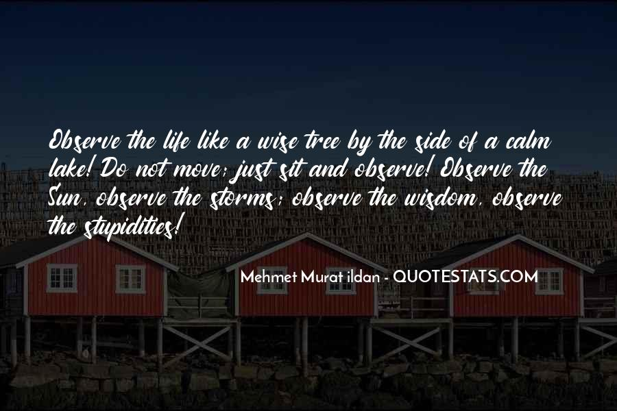 Quotes About The Life Of A Tree #861609