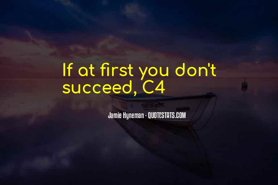 Quotes About If At First You Don Succeed #1572991