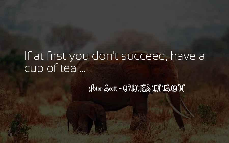 Quotes About If At First You Don Succeed #1779134