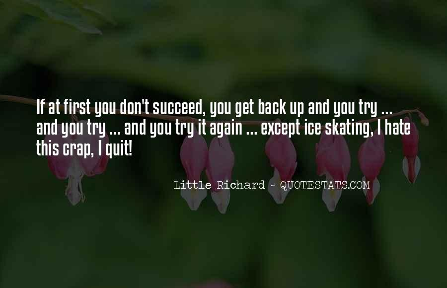 Quotes About If At First You Don Succeed #1799042