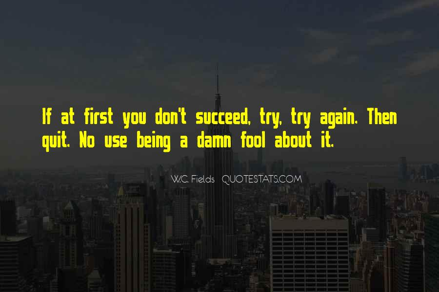 Quotes About If At First You Don Succeed #443887