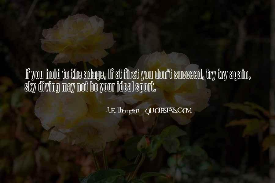 Quotes About If At First You Don Succeed #681516
