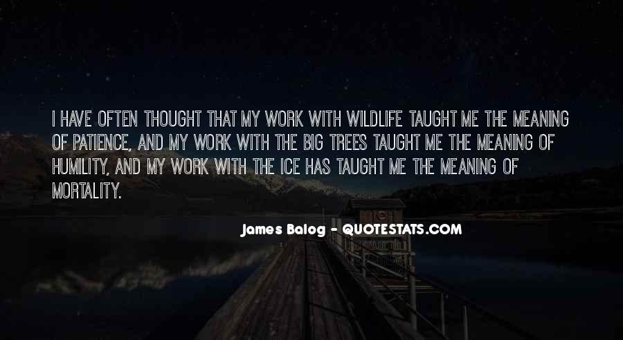 Quotes About Humility And Patience #280887