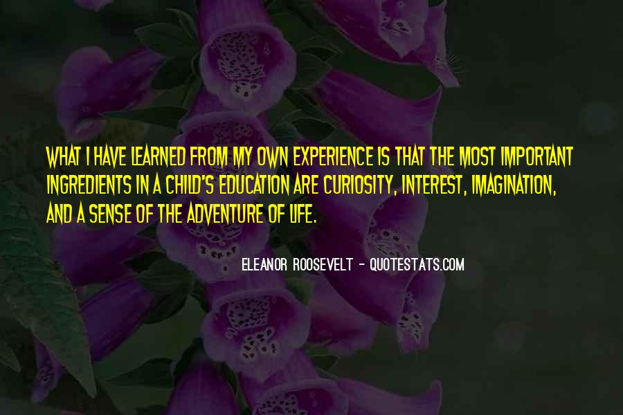Experience Is The Best Education Quotes #2729