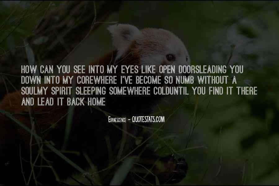 Eyes Lead To The Soul Quotes #1275587