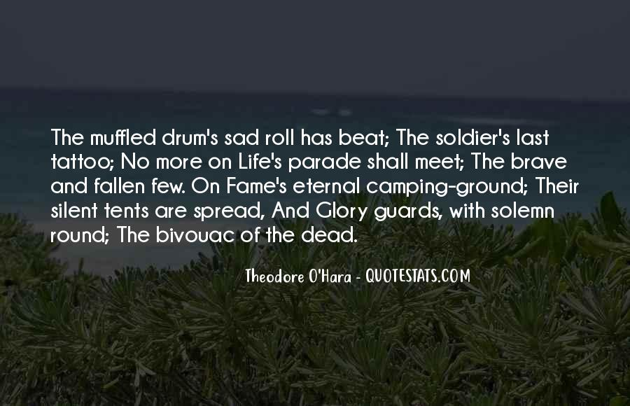 Fallen Soldier Quotes #1547916