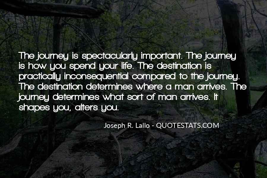 Quotes About The Journey Is More Important Than The Destination #606222