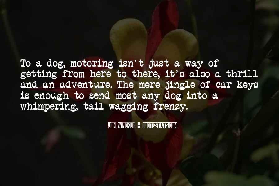 Famous Chuck Norris Quotes #1742624