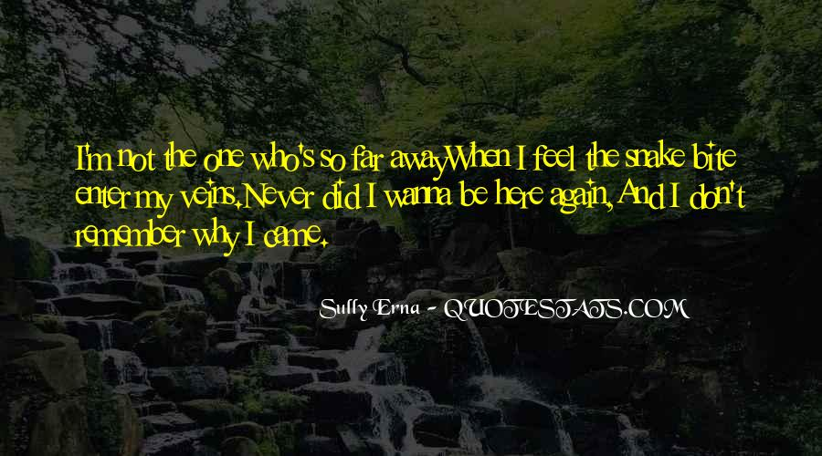 Far Away From Here Quotes #33252