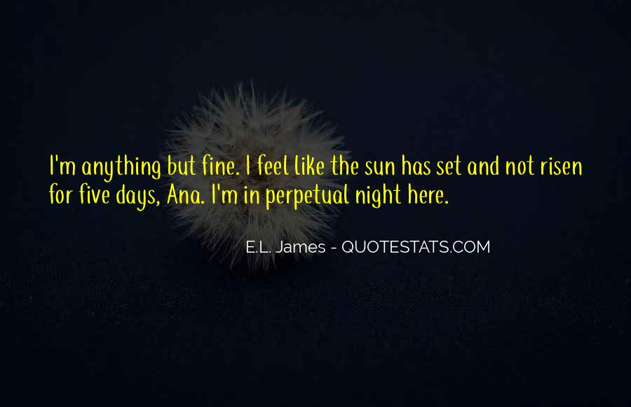 Feel The Sun Quotes #118017